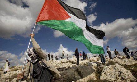 ¡PALESTINA EXISTE, RECONOCIMIENTO YA!¡ALTO AL GENOCIDIO PALESTINO!