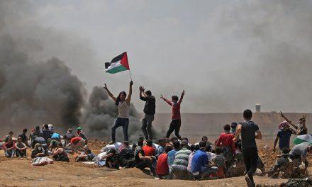 La lucha en Palestina
