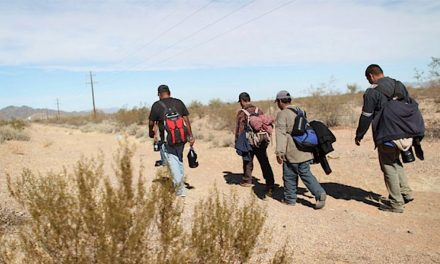 Migración: la marcha de los desposeídos